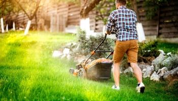 L'entretien d'une pelouse, faut il faire appel à un jardinier?